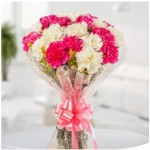 10 pink and white carnation